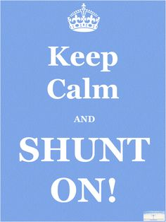 """Keep Calm and SHUNT ON!""  Hydrocephalus Awareness!"