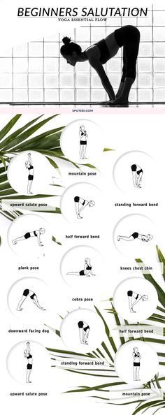If you're new to yoga and want to start the day with an invigorating sequence, try this 15-minute beginners salutation flow. Move slowly through the poses and synchronize the breath with each posture to energize your body and mind! www.spotebi.com/...https://www.spotebi.com/yoga-sequences/beginners-salutation-flow/