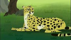 Join Chris and Martin on a Creature Adventure with the world's fastest land animal: the cheetah. In this full episode with accompanying clips, Chris and Martin are on a mission to prove that no creature or vehicle can travel as fast over the rough and tumble African savannah as the cheetah. Aviva takes the challenge and declares she will build a ground racer that can run even faster than a cheetah. Of course, Zach wants to prove that he is a better inventor than Aviva and joins the race....