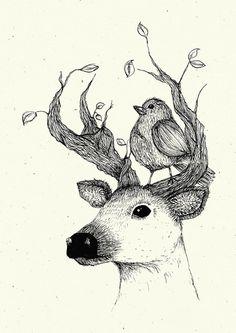 Illustration als schöne Wanddekoration: Poster mit einem liebevoll illustrierten Hisch mit einem Vogel / poster with a deer illustration made by federlein via DaWanda.com
