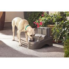 PetSafe; Drinkwell; Outdoor Dog Pet Fountain - Tractor Supply Online Store
