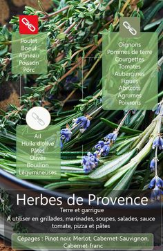 How to cook Herbes de Provence Cuisine Diverse, Marinade Sauce, Herb Seeds, Aromatic Herbs, Spices And Herbs, Seasoning Mixes, Natural Herbs, Spice Blends, Herbal Medicine