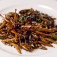 Food experts want people to eat insects - try #edibleinsects @ www.buggrub.com