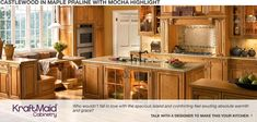 KraftMaid - Castlewood MIGHT potentially be able to incorporate some design features in existing cabinets