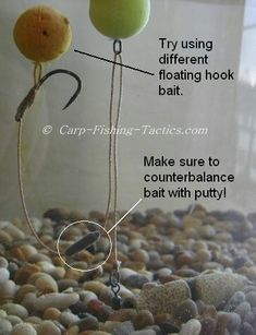 Carp Fishing Rigs Counterbalancing the carp rigs