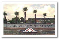 University of Arizona...My amazing Daddy David Martinez made this sign! :)