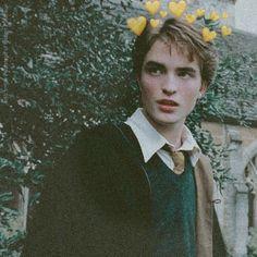 Mundo Harry Potter, Harry Potter Icons, Draco Harry Potter, Harry Potter Tumblr, Harry Potter Aesthetic, Harry Potter Characters, Hogwarts, Slytherin, Robert Pattinson