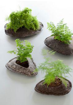 #felt and #plants / Ronel Jordaan / Design Network Africa