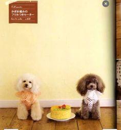 Makes me want 2 poodles!