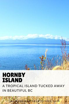 Hornby Island, A Tropical Island Tucked Away In Beautiful BC Hornby Island is a Northern Gulf Island located near Vancouver Island's Comox Valley. Wrapped in this island are a multitude of treasures perfect for the foodie, the outdoor enthusiast, the reader rabbit, the coffee connoisseur, the adrenaline junkie, the sporty spice and the eco-friendly. If you need a week to rejuvenate, the beach will take care of you.