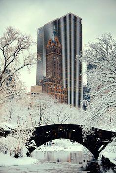 Les sapins se parent de mille et une lumières, Central Park se couvre de neige... Westwing vous fait découvrir un New York enchanteur pour Noël.