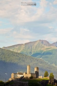 Bellinzona Canton Ticino, Clean Beach, Alleyway, Camping Life, Trip Planning, Palm Trees, Travel Ideas, Switzerland, Places Ive Been