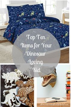 If you have trouble shopping for your dinosaur loving youngster, here's the top ten items for your dinosaur loving kid!