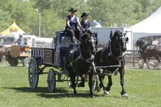 The Schomberg Agricultural Fair will be held on the weekend of May 28-31, 2015. Come for the rides, performances, food, exhibits, competitions, and our favorite traffic jam - the Demolition Derby! Yippee!!!!