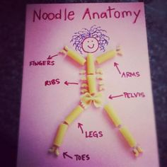 Nice way to teach human body parts