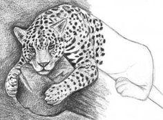die 43 besten bilder von zeichnen | zeichnen, zeichnungen