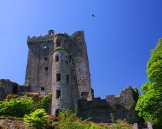 Blarney Castle. County Cork, Ireland. Kissed the Blarney Stone, got the gift of gab!