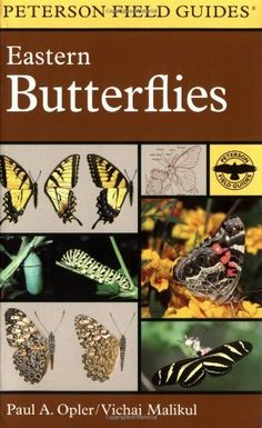 A Field Guide to Eastern Butterflies (Peterson Field Guides)