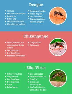 Blog do Rio Vermelho, a voz do bairro: Epidemia de microcefalia: Emergência de Saúde Públ...
