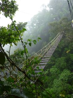 Costa Rica | 23 Insane Hanging Bridges