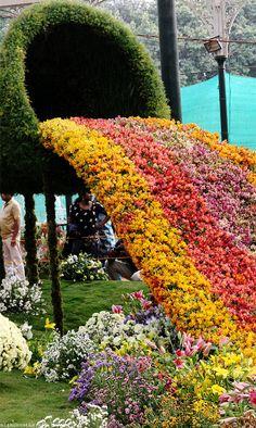 Republic Day Flower Show, Lal Bagh Botanical Garden, Bangalore, India