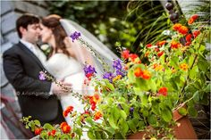 Creative wedding photos in downtown Lake Orion. #bride #groom #wedding #flowers #photography