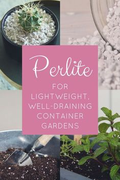 I love using perlite in my container gardens! It really helps to get some air into the soil and hold drainage pathways open, all while keeping the soil light and fluffy. Best of all, it's completely safe for organic gardening! There are tons of ways to us