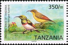 Rufous-winged Sunbird stamps - mainly images - gallery format
