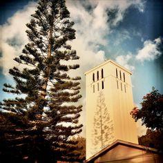 Large Wall Prints, Art Prints, Waimea Bay, Hawaiian Art, Shadow Art, Metallic Prints, Beach Art, Art Market, Online Art
