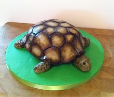 hamblemouse: Cakes: A Tortoise, a Train, and a bit of Star Wars