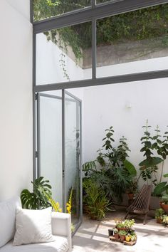 Framing Construction, Poplar Tree, Garden Design, House Design, Small Courtyards, Micro House, Courtyard House, Terrace Garden, Small Patio