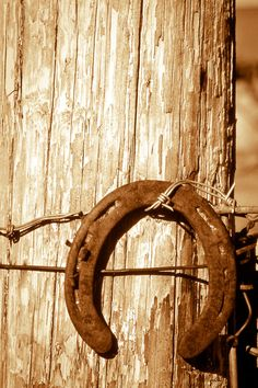 horseshoe weathered post still life distressed by debbiesfineart
