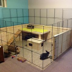 Had to redo our rabbit house a few months back. Our rabbit condo was to difficult to clean. This is working out much better. Diy Bunny Cage, Diy Guinea Pig Cage, Bunny Cages, Rabbit Cages, Rabbit Hutch Indoor, Indoor Rabbit Cage, Indoor Rabbit House, Pet Bunny Rabbits, Pet Rabbit