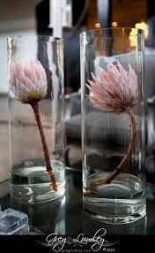 Image result for large protea arrangements