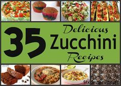 35 Delicious Zucchini Recipes . . . never wonder what to make with all those zucchini again!