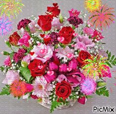 Consultez le PicMix fleurs appartenant à sur PicMix. Happy Birthday Wishes Quotes, Gif Photo, Gifs, I Wallpaper, Rose Bouquet, Beautiful Roses, Happy Mothers Day, Floral Wreath, Spring Summer