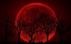 bloody_red_moon_by_sphicx-d4ldci4.jpg (900×563)