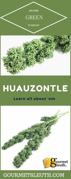 Learn About Huauzont