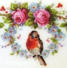 Robin roses and forget me not vintage china