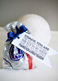 Baseball and Volleyball Gift Tags