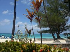 View from restaurant at Grand Cayman Beach Suites