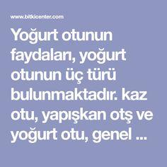 Yoğurt otunun faydaları, yoğurt otunun üç türü bulunmaktadır. kaz otu, yapışkan otş ve yoğurt otu, genel olarak şifalı maddeleri ortaktır fakat görüntüleri..