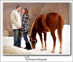 Maybe we should do some pictures with our horses.