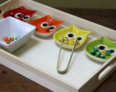 Montessori Tray - Owl Color Sort and Tong Transfer Work