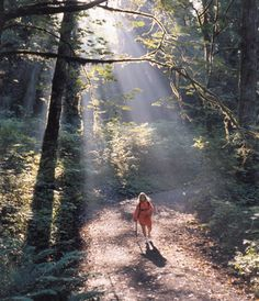 Hiking the numerous trails in Snohomish County, WA