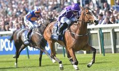 Mindings 1000 Guineas superiority prompts talk of gatecrashing Derby