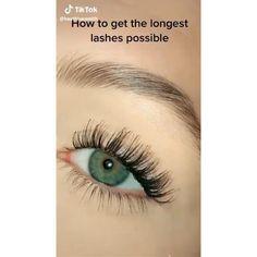 How to get the longest lashes possible? So plz see this eyelash hack and apply this cool setting. #eyelashes #eyemakeup #makeup #beauty #eyebrow #brushes #kit So I hope you enjoyed vedio.. Basic Eye Makeup, Eye Makeup Images, Eye Makeup Designs, Daily Makeup, Eye Makeup Tips, Makeup Eyes, Eye Makeup Brushes, Makeup Brush Set, Long Lashes