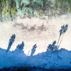 Early morning shadows. . . . . . . . #dronefly #beach #shadows #palmtrees #walkingthebeach #oceanview #oceanminded_arts #oceanphotography #surfinglife #travelogue #instadaily #sunrise #djimavicpro #dji #droneporn #dronestagram #dronephotography #adventure