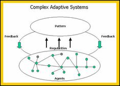 What are Complex Adaptive Systems?