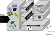An Unified Framework to Integrate Biotic, Abiotic Processes and Human Activities in Spatially Explicit Models of Agricultural Landscapes